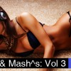 Thumbnail image for RE:mixes and Mash^s Volume 3