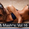 Thumbnail image for RE:mixes and Mash^s Volume 16