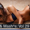 Thumbnail image for PLAYLIST: RE:mixes & Mash^s Volume 29