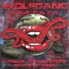 Wolfgang Gartner - Casual Encounters of the 3rd Kind (Original Mix)