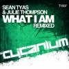 Thumbnail image for Sean Tyas & Julie Thompson – What I Am (Original Mix + Bryan Kearney & Magnus Remixes)