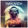 Thumbnail image for Dimitri Vegas & Like Mike – Wakanda (Original Mix)