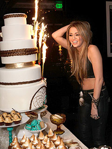Miley Cyrus 18th Birthday Photo by Jeff Vespa/MC/WireImage