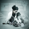 Music Video: Skylar Grey - Invisible (Dirty South Remix)